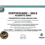 Certificado CAZ 2013