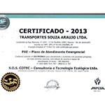 Certificado CPAE 2013